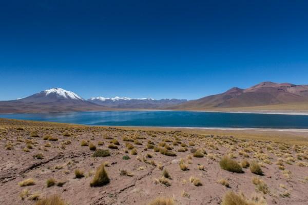 Laguna Miscanti - umas das Lagunas Altiplânicas no Atacama