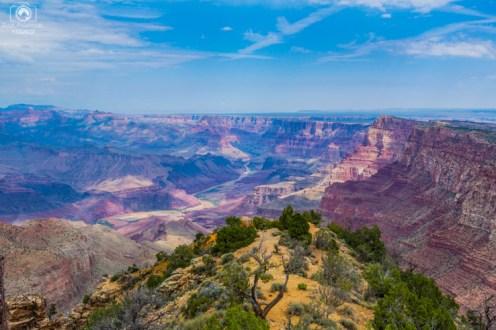 Rio Colorado no Parque Grand Canyon
