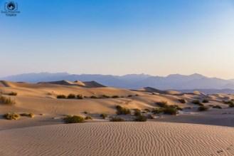 Mesquite Flats no Parque Death Valley