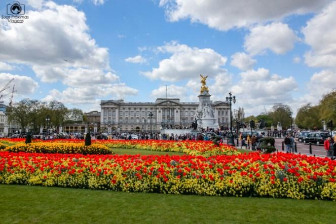 Palácio de Buckingham em O que fazer em Londres