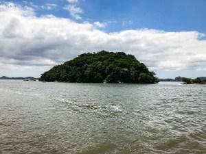 Ilha na Baia de Babitonga em Joinville