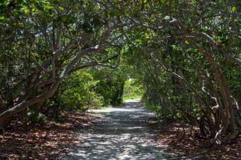Bahia Honda SP nos Florida Keys