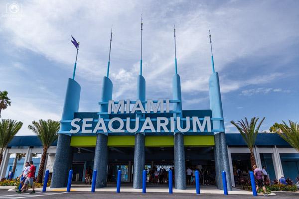 Miami Seaquarium em Roteiro Miami