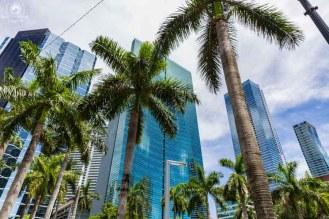 Prédios da Brickell em lugares para conhecer em Miami