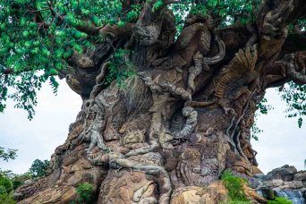 Árvore da Vida no Magic Kingdom em Parques em Orlando
