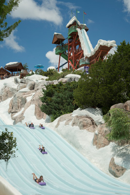 oboggan Racers waterslide at Disney's Blizzard Beach Water Park