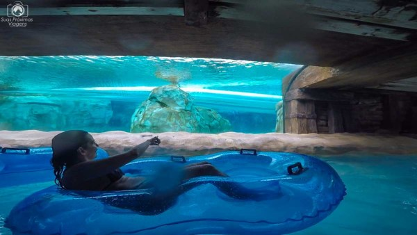 Loggerhead Lane no Aquatica Orlando