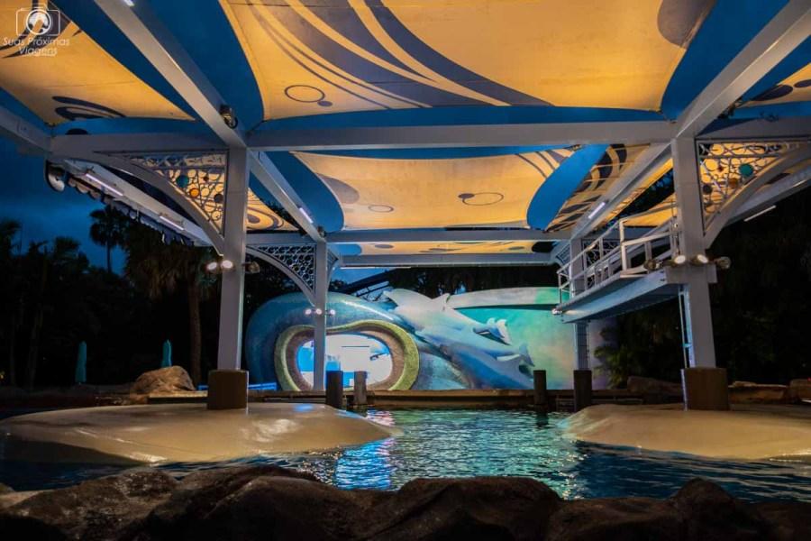 Dolphin Cove no Seaworld Orlando