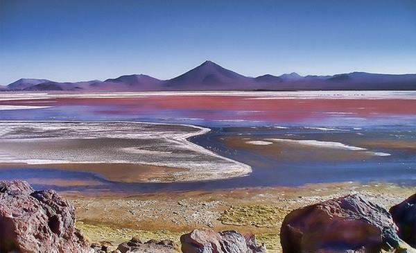 Foto da Laguna Colorada na Bolivia