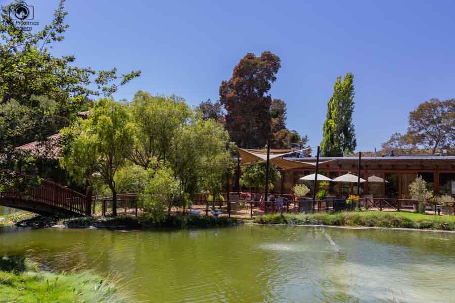 Imagem do lago de frente ao restaurante da Viña EQ Matetic
