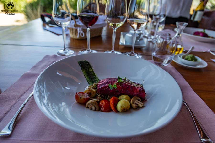 imagem do prato principal do almoço do restaurante clos apalta no vale de colchagua