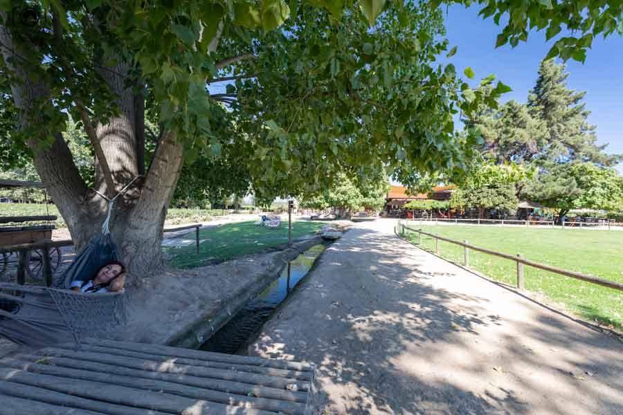 Imagem da área externa viña Viu Manent em Valle de Colchagua