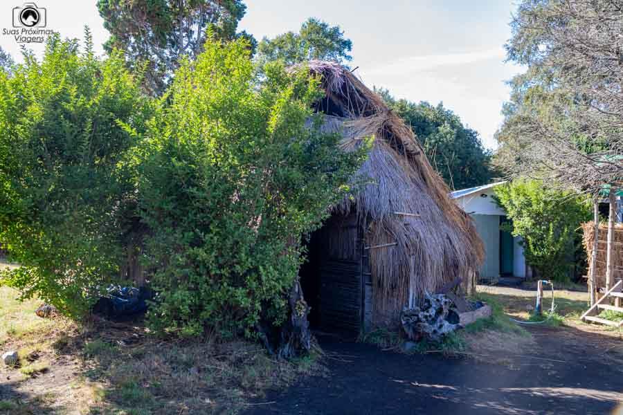 imagem da tenda mapuche em o que fazer em Pucón