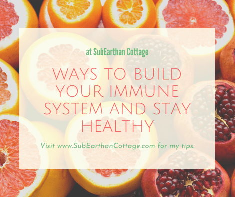 Ways to Build Your Immune System and Stay Healthy