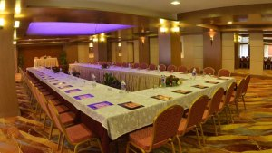 Meeting Hall of Radission Hotel