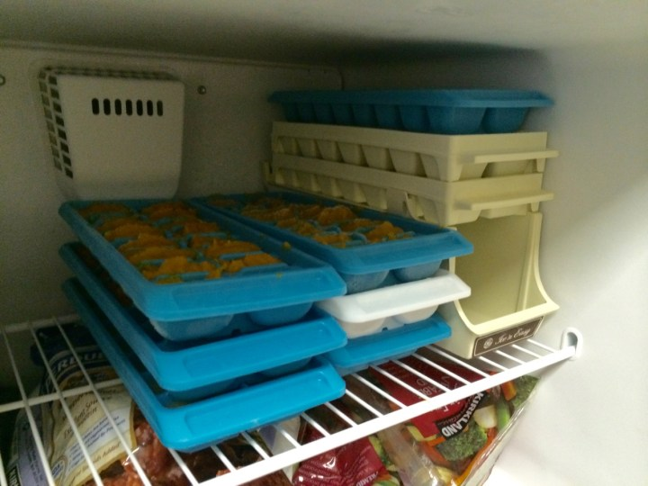 A freezer full of baby food, made in under two hours