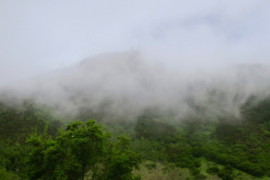 Pico Basilé, Bioko Island, Equatorial Guinea