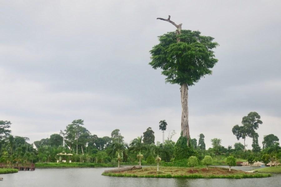 malabo equatorial guinea national park
