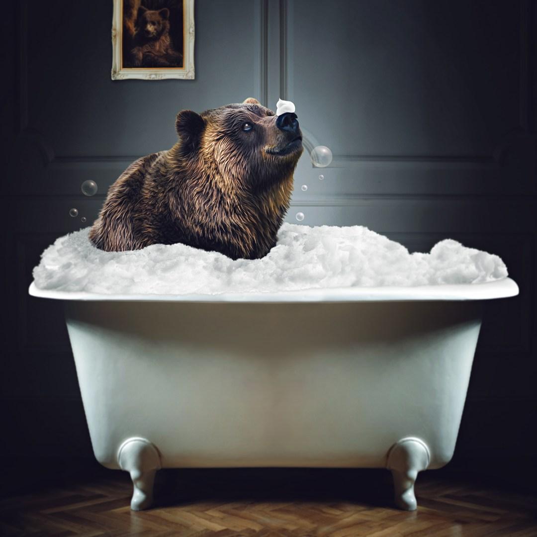 photomanipulation : teddy prend son bain