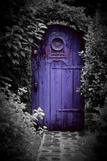 picture of the purple door