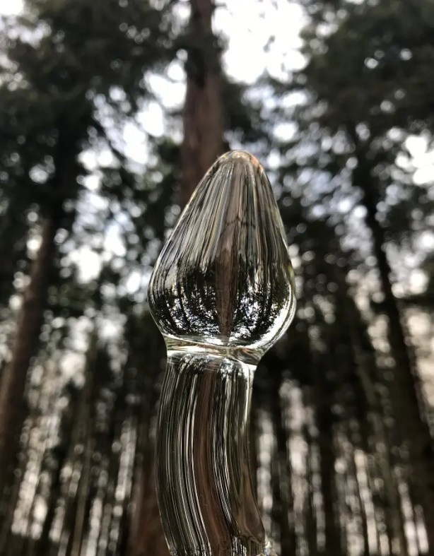 G is for Glass - glass dildo in the forest