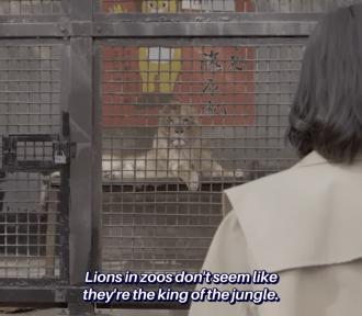 Solo Katsu Joshi no Susume episode 2