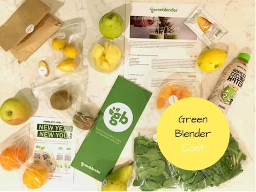 Green Blender Cost