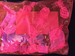 Exclusive PopSugar Samudra Pink Pina Zip Pouch