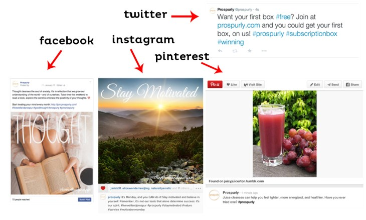 Prospurly Social Media