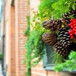holiday-gifting
