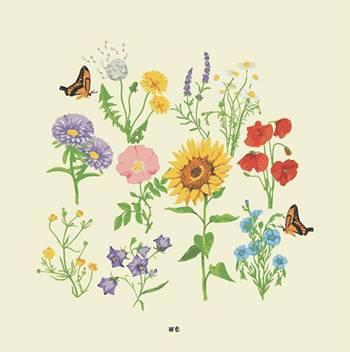 gnash - we album art