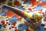 Pheasant on Fabric
