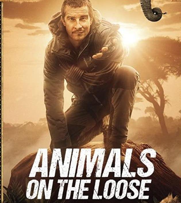 Animals on the Loose: A You vs. Wild Movie (2021): ผจญภัยสุดขั้วกับแบร์ กริลส์ เดอะ มูฟวี่