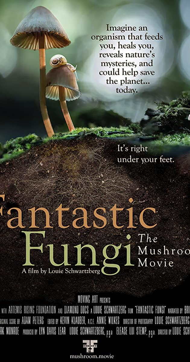 Fantastic Fungi (2019): เห็ดมหัศจรรย์