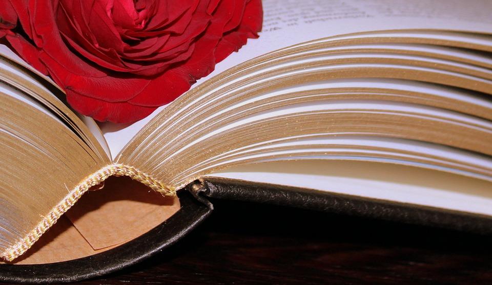 Nefericire... Cum m-am vindecat de nefericire - din carte citire