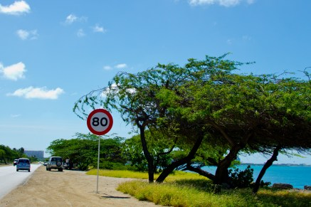 Aruba-12