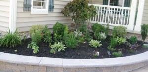 Entryway flower patch