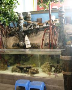 Huge aquarium