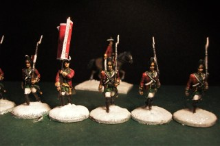 Grenadiers and flag bearer