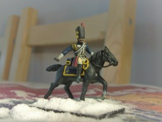 horse-grenadiers-horses-4
