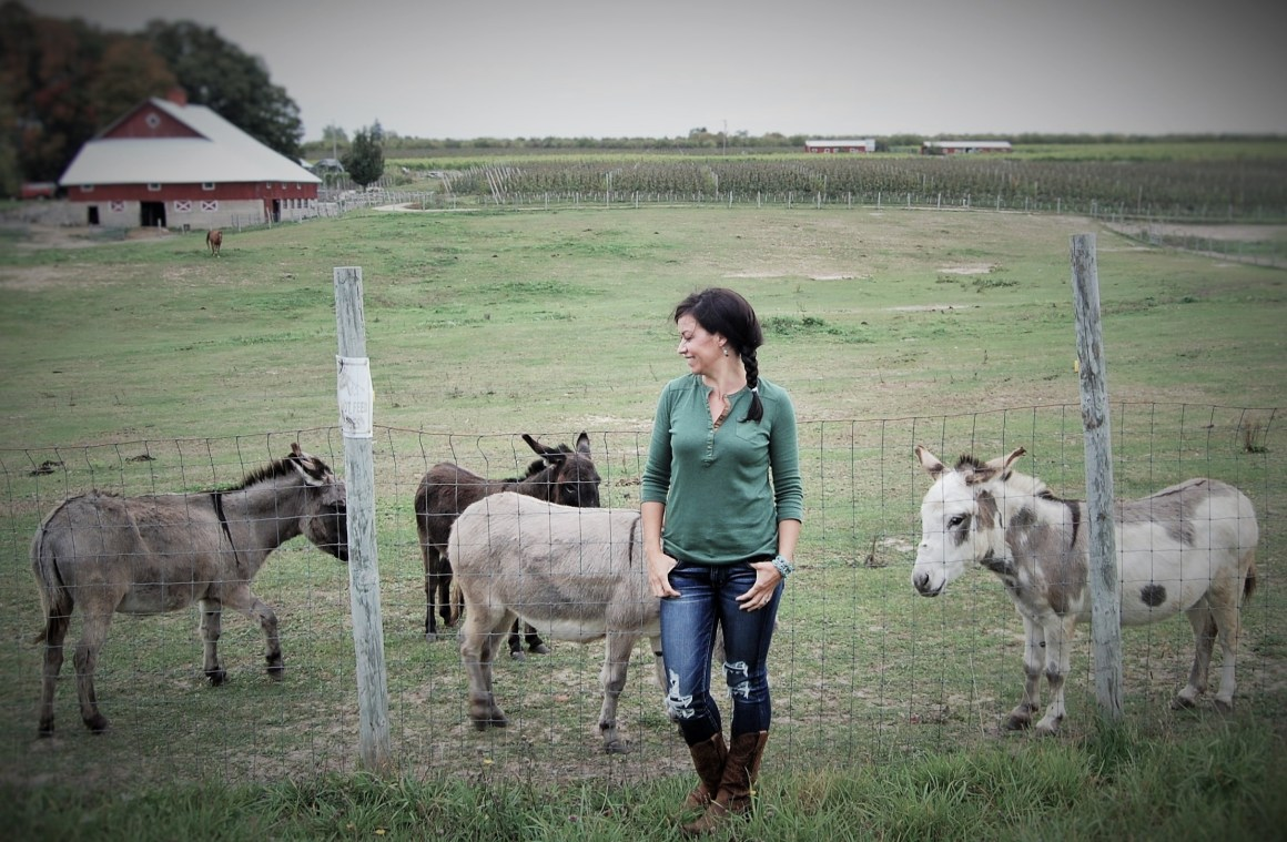 Hanging with the Donkeys