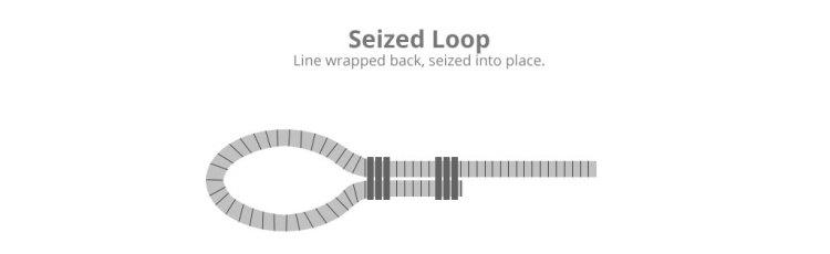 seized-loop