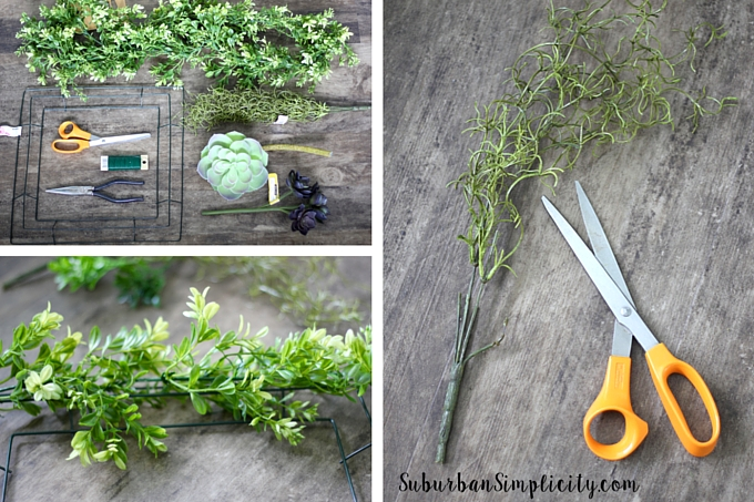 How to make a Succulent and Boxwood wreath steps