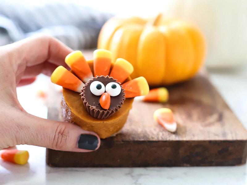 Pumpkin Pie Turkey with pumpkin in background.