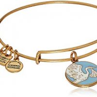 Alex and Ani Womens Blue Special Delivery Charm Bangle