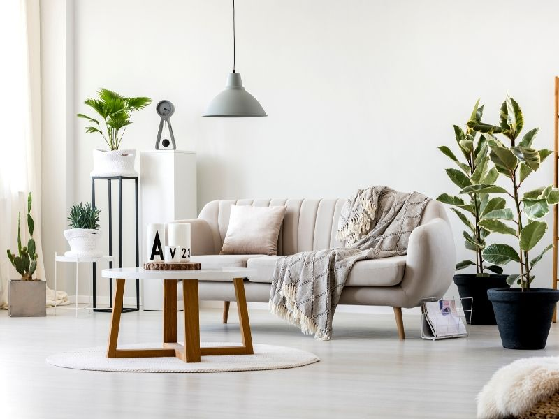 Feng shui decor ideas for your home