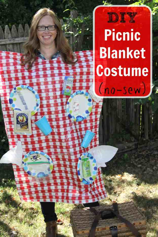 DIY Picnic Blanket Costume no-sew