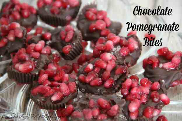 Chocolate Pomegranate Bites with Sea Salt