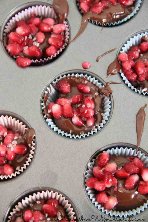 Chocolate Pomegranate Bites