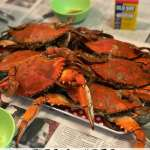 How to Pick a Crab - Tips and Video